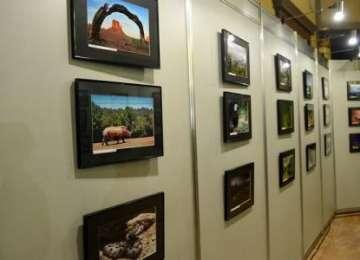 S-a dat startul înscrierilor pentru Salonul Național de Fotografie