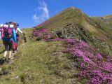 S-a deschis sezonul turistic în Pietrosul Rodnei