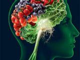 Șapte superalimente care îmbunătăţesc memoria