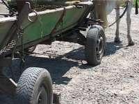 Sat Şugatag: Un microbuz a intrat în coliziune cu o căruţă