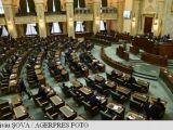 Senat: Plenul a respins introducerea pe ordinea de zi a proiectului privind alegerea primarilor în două tururi