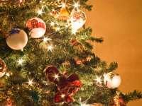 Sezonul sărbătorilor! De unde provine obiceiul împodobirii bradului de Crăciun