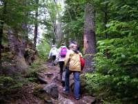 Sfaturi utile pentru trasee de munte şi cum să ne ferim de animale