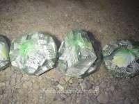 SIGHET: Contrabandiști cu pachete de țigări lipite pe corp cu bandă adezivă