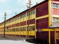 SIGHET: Importăm cherestea de fag și rășinoase și exportăm mobilier din lemn
