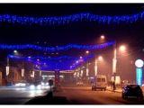 SIGHET - În 5 decembrie se vor aprinde luminițele Bradului de Crăciun din Centru