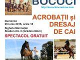 SIGHET - Spectacol de acrobație și dresaj de cai, relizat de sigheteanul Miron Bococi