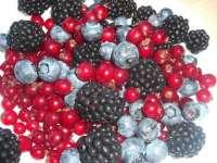 Fructele de padure-Gustoase dar daunatoare