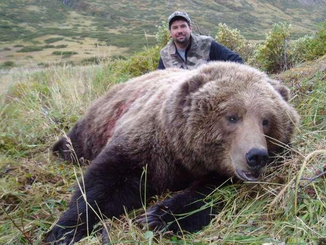 Reclame mincinoase sau corupție la nivel înalt în Romsilva? Un individ din Anglia organizează vânătoare de urși în România