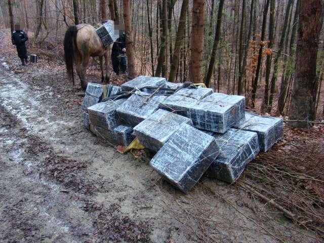 VIDEO: Contrabandă prin apă şi ţigări transportate cu animale de tracţiune