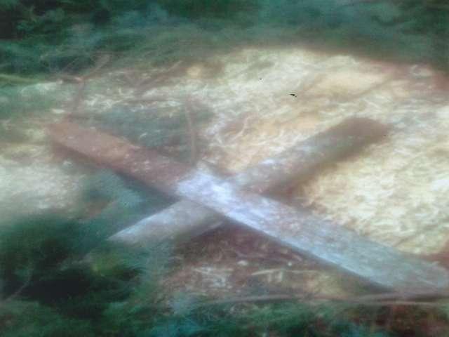 Primarul din Ocna Șugatag, acuzat că a distrus Cimitirul din localitate și că a vândut lemnul tăiat din cimitir
