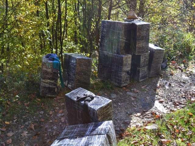 Peste 9.000 pachete ţigări de contrabandă, confiscate de Polițiștii de frontieră