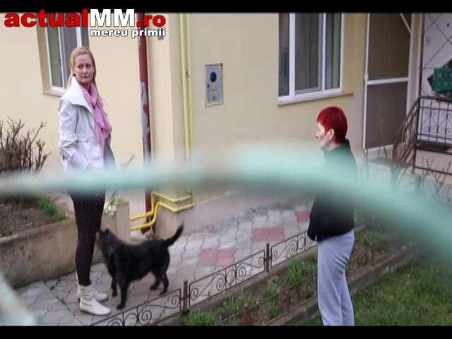 Campioană națională la handbal, legitimată la HCM Baia Mare, atacată de un tâlhar chiar în faţa casei. Aceasta a fost dusă la spital
