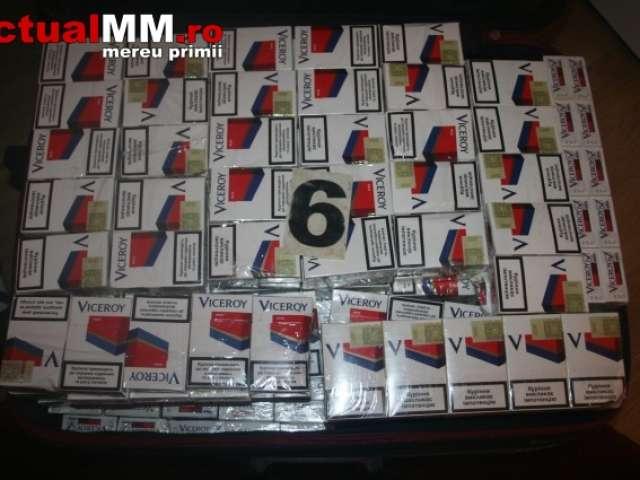 VIDEO - 19.000 pachete ţigări în valoare de 192.000 de lei confiscate în urma unei percheziţii domiciliare
