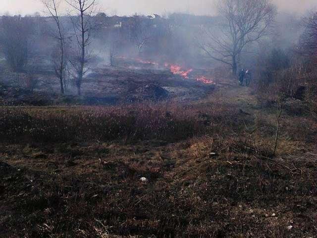 FOTO - SIGHET: Incendiu de vegetație violent în zona Cămara