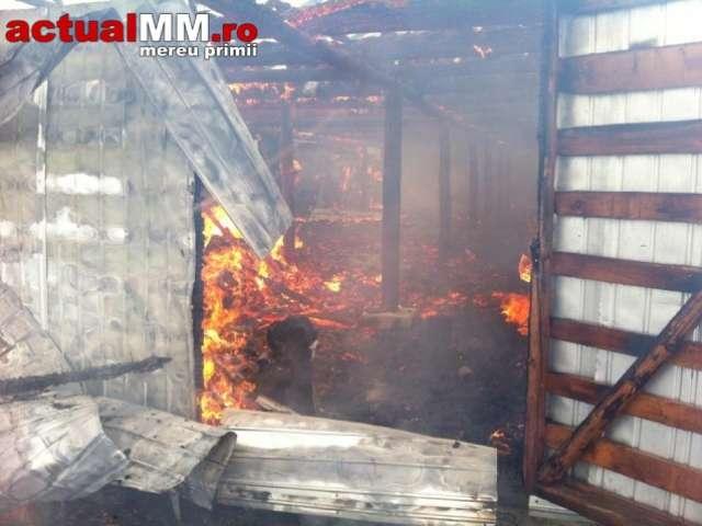 VIDEO - Un saivan a fost incendiat de persoane necunoscute în Săpânța