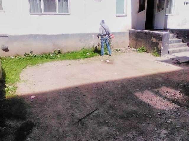 NOI AFACERI PE SPATELE SIGHETENILOR - Urbana toacă banii degeaba în timp ce o firmă de partid tunde iarba în municipiu