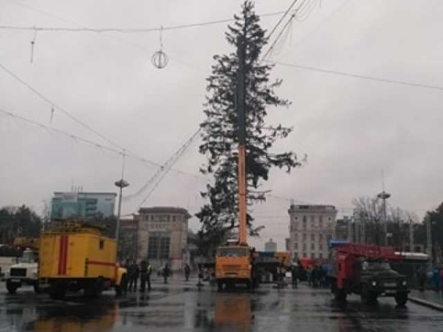 VIDEO - Primăria Chișinău a adus în Piața Centrală un brad nou, după ce bradul anterior arăta catastrofal