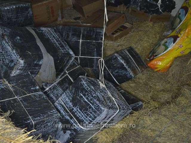 FOTO&VIDEO: SARASĂU - Țigări de contrabandă, ascunse într-un saivan, descoperite de polițiștii de frontieră