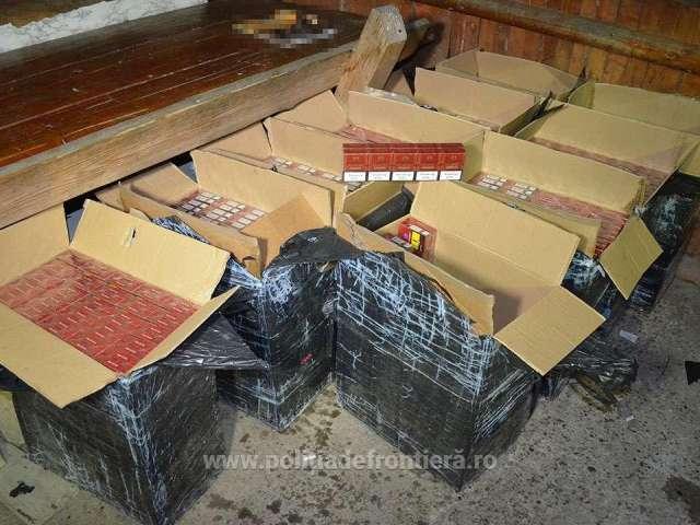 FOTO: Valea Vișeului - Cetățean ucrainean reținut și 4.800 pachete cu țigări de contrabandă confiscate