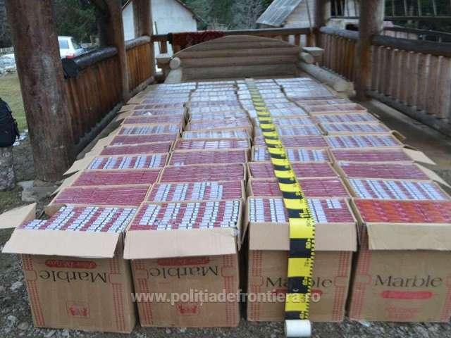 VIDEO - Aproximativ 45.000 de pachete cu ţigări, confiscate în urma unei percheziții domiciliare