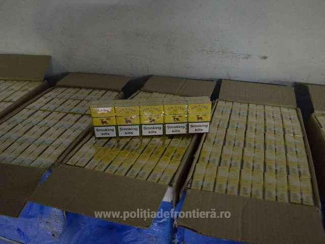 FOTO: SARASĂU - Aproximativ 10.000 de pachete cu ţigări, confiscate de polițiștii de frontieră