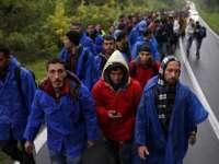 Slovenia va apela la firme de pază private care să ajute la gestionarea fluxului de migranți
