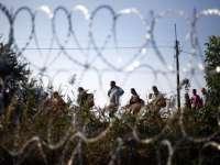 Slovenia va ridica un gard la granița sa cu Croația pentru a controla fluxul de migranți