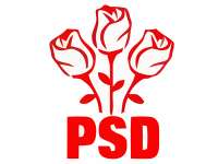 Sondaj de opinie: PSD, favorit la europarlamentare