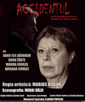 Piesă de teatru la Centrul Cultural Sighetu Marmației