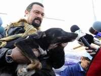 Steven Seagal a adoptat un câine fără stăpân din România