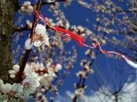 Superstiţii de Mărţişor: Ce să nu faci în prima zi a primăverii