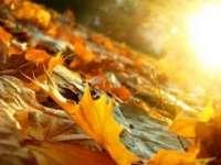 Temperaturi peste normele climatologice ale perioadei, în următoarele două săptămâni