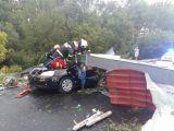 Timiș - Cinci dosare penale pentru ucidere din culpă, deschise de autorități după furtună