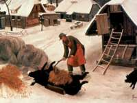 Tradiţii şi obiceiuri de IGNAT: De ce se taie porcul pe 20 decembrie?