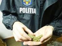 Traficant de droguri reţinut de poliţiştii maramureşeni