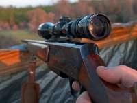 TRAGEDIE în Maramureș! Administratorul unui fond de vânătoare a fost ÎMPUŞCAT MORTAL de un jandarm, în timp ce se afla la vânat de mistreţi