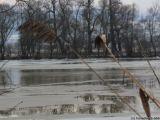 TRAGEDIE LA VIȘEU DE SUS – Un bărbat a fost găsit mort în râul Vișeu