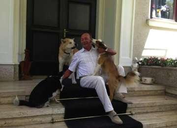 Traian Băsescu a PROMULGAT legea privind EUTANASIEREA câinilor fără stăpân