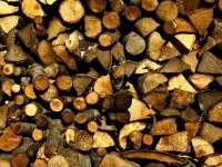 Transport ilegal de material lemnos depistat de politisti in Maramures