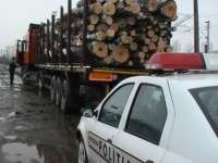 Transport ilegal de material lemnos depistat de poliţiştii maramureşeni