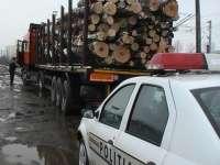 Transport ilegal de material lemnos depistat ieri de poliţiştii maramureşeni