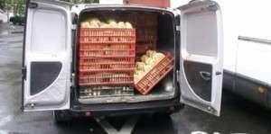 Transportul şi comercializarea produselor de panificaţie în atenţia poliţiştilor de investigare a fraudelor