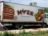 Trei migranți sirieni, descoperiți aproape asfixiați într-un camion frigorific în Spania