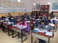 Trei olimpiade naționale școlare se vor desfășura în Maramureș