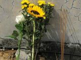 Trei rude ale Papei Francisc au murit într-un accident rutier