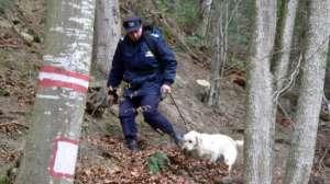 Turiste poloneze rătăcite în munții din Borșa