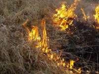 Un incendiu de vegetaţie uscată a izbucnit în Pasul Prislop