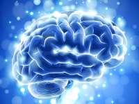 Un nou medicament cu eficiență ridicată împotriva maladiei Alzheimer