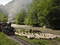 #UnicInEuropa - Locomotivele trenului Mocănița, bunuri de patrimoniu național și atracție pentru turiști